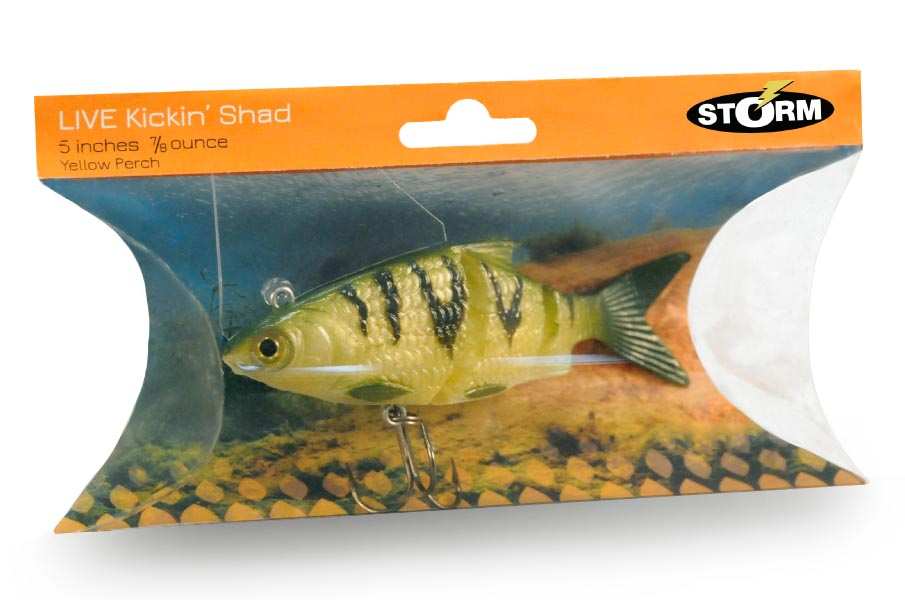 Storm fishing lures deidra anderson for Storm fishing lures